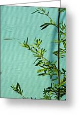 Green On Aqua 1 Greeting Card
