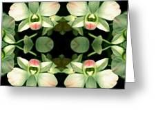 Green Orchid Meeting Greeting Card