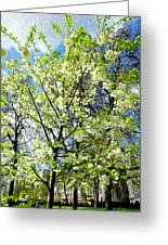 Green Park, London Greeting Card