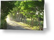 Green Path Greeting Card by Barbara Marcus
