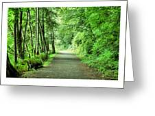Green Path Greeting Card
