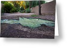 Green Puddle Greeting Card