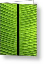Green Ribs Greeting Card