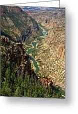 Green River Carving Canyon Greeting Card