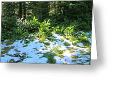 Green Snow Greeting Card