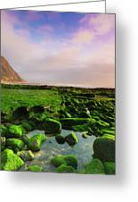 Green Soul Of The Cliff Greeting Card