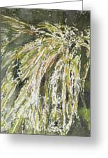 Green Reeds Greeting Card
