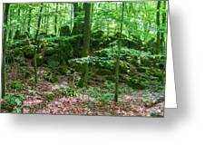 Green Stony Forest In Vogelsberg Greeting Card