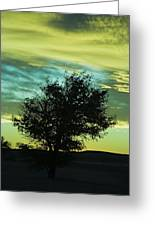 Green Sunset Greeting Card