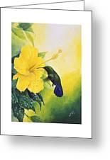 Green-throated Carib Hummingbird And Yellow Hibiscus Greeting Card