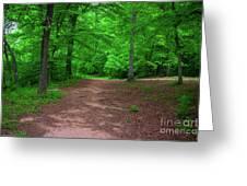 Green Trail Greeting Card