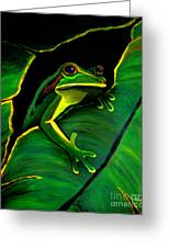 Green Tree Frog And Leaf Greeting Card by Nick Gustafson