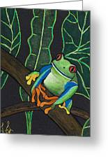 Green Tree Frog Greeting Card