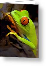 Green Tree Frog Greeting Card