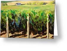 Green Vineyards Of Napa Greeting Card