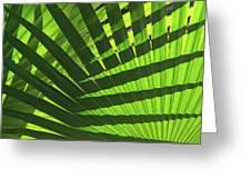 Green Weaver Greeting Card