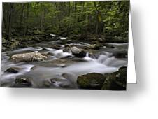 Greenbrier In The Great Smoky Mountains Greeting Card