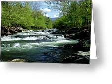 Greenbrier River Scene Greeting Card