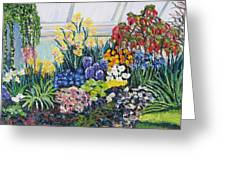 Greenhouse Flowers With Blue And Red Greeting Card