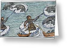 Greenland Eskimos, 1555 Greeting Card