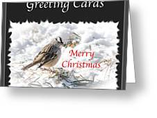 Greeting Card Cover Photo Greeting Card