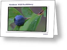 Greeting Card - Huckleberry #4 Greeting Card