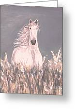 Grey And White Greeting Card