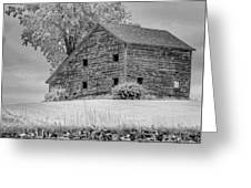 Grey Barn On A Grey Day Greeting Card