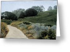 Grey Day Pt. Lobos Greeting Card