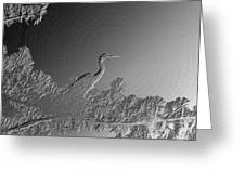 Grey Heron At Morning In Bas Relief Greeting Card