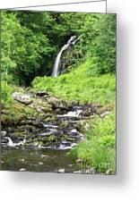 Grey Mares Tail Greeting Card