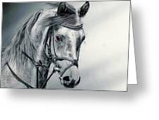 Grey Greeting Card
