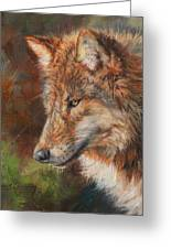 Grey Wolf Face Greeting Card