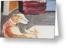 Greyhound And Spaniel Greeting Card