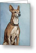 Greyhound Commission Painting By Irina Sztukowski Greeting Card