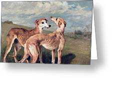 Greyhounds Greeting Card by John Emms