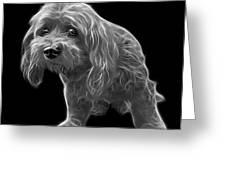 Greyscale Lhasa Apso Pop Art - 5331 - Bb Greeting Card