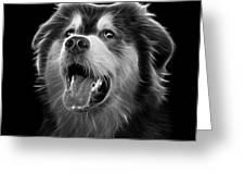 Greyscale Malamute Dog Art - 6536 - Bb Greeting Card