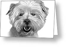 Greyscale West Highland Terrier Mix - 8674 - Wb Greeting Card