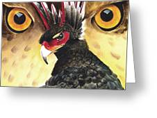 Griffin Sight Greeting Card