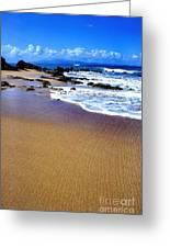 Gringo Beach Vieques Puerto Rico Greeting Card