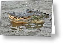 Grinning Gator Greeting Card