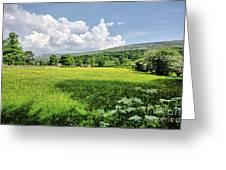 Grinton Meadows Greeting Card