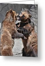 Grizzlies' Playtime 3 Greeting Card