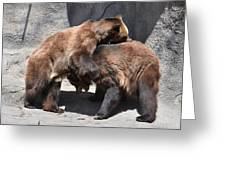 Grizzlies' Playtime 4 Greeting Card