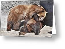 Grizzlies' Playtime 5 Greeting Card
