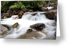 Grizzly Creek Greeting Card