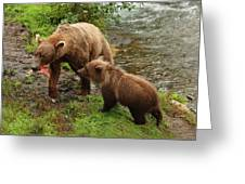 Grizzly Dinner For Two Greeting Card
