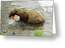 Grizzly Great Catch Greeting Card