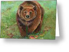 Grizzly In The Meadow Greeting Card by Lauren Heller